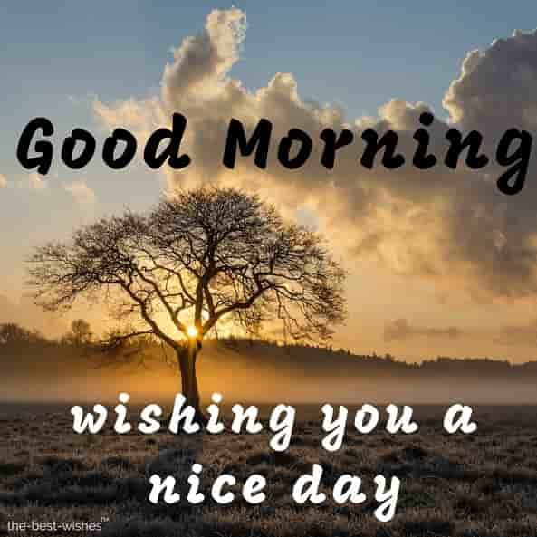 good morning wishing you a nice day