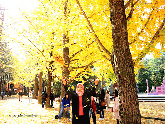 Itinerary Autumn Korea