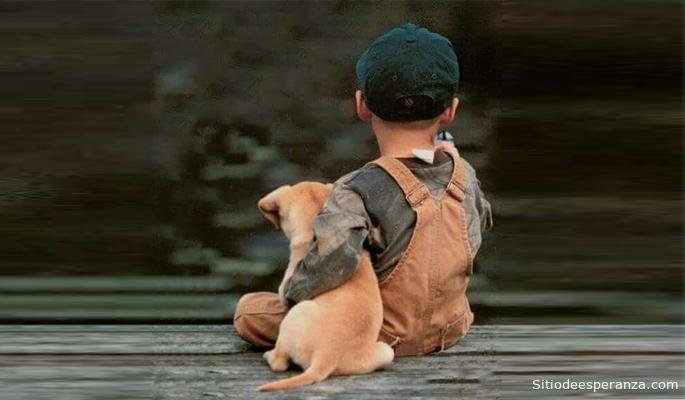 Reflexión El niño y el perrito cojo