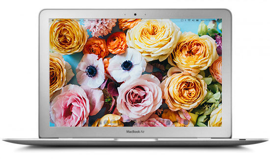 Blooming wallpapers from Design Love Fest