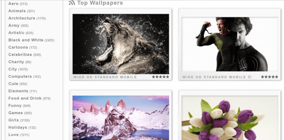 Wallpaperswide 免費下載高畫質桌布