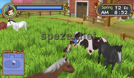 Mengurus Hewan di Starling Ranch Game Harvest Moon Hero of Leaf Valley
