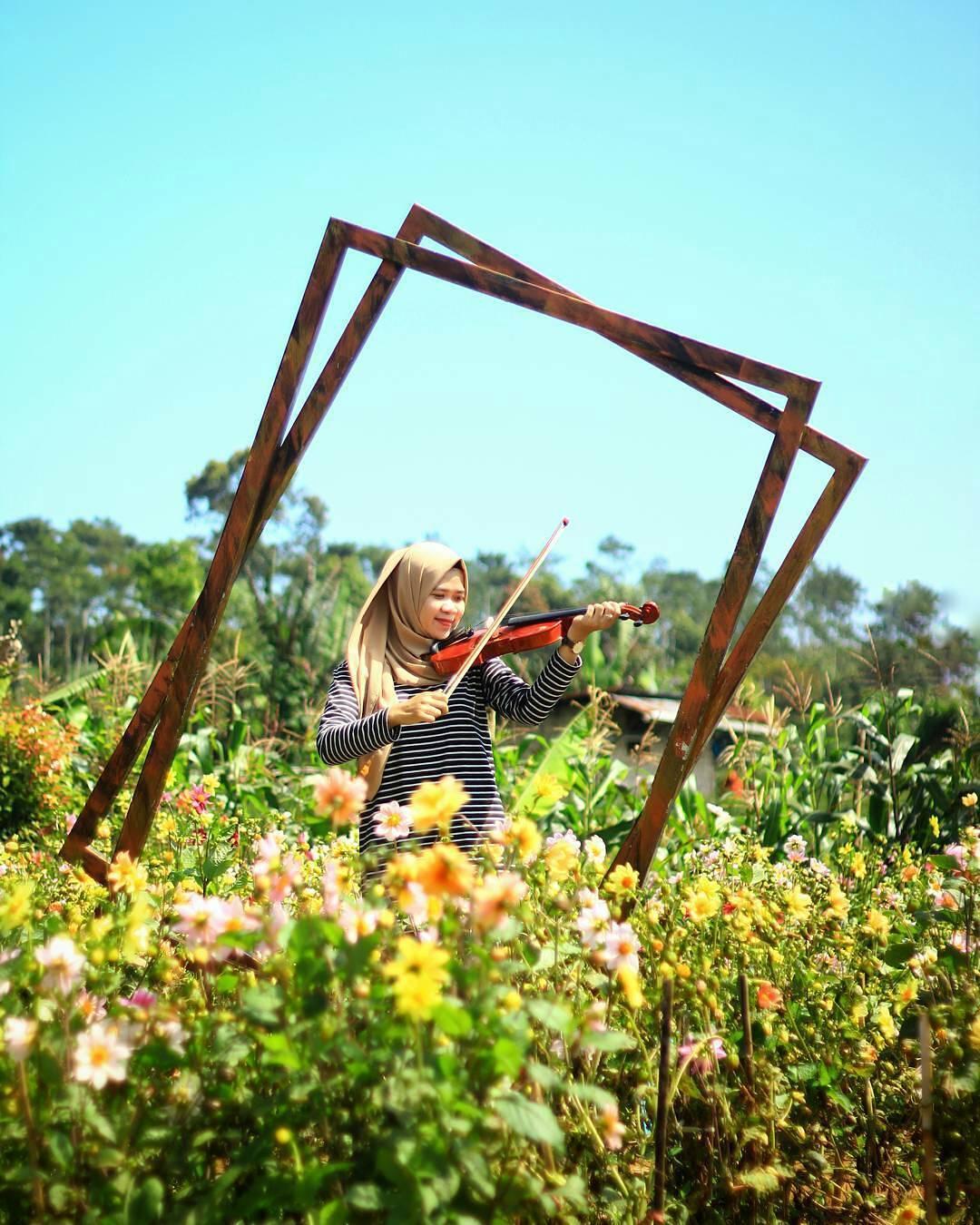 Lokasi dan Harga Tiket Masuk Kutabawa Flower Garden ...