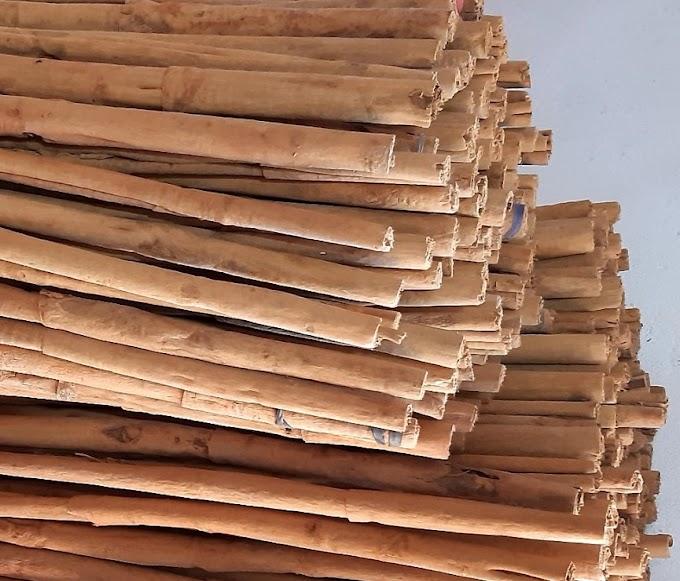 Ceylon Cinnamon for Diabetics