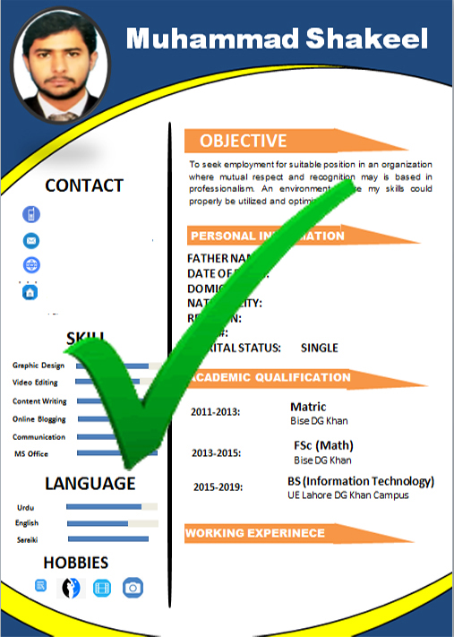 Fee Professional Resume (CV) Template Download