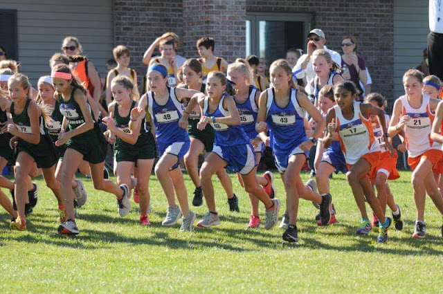 GHMS CC 12th Annual Invitational, Metamora Herald