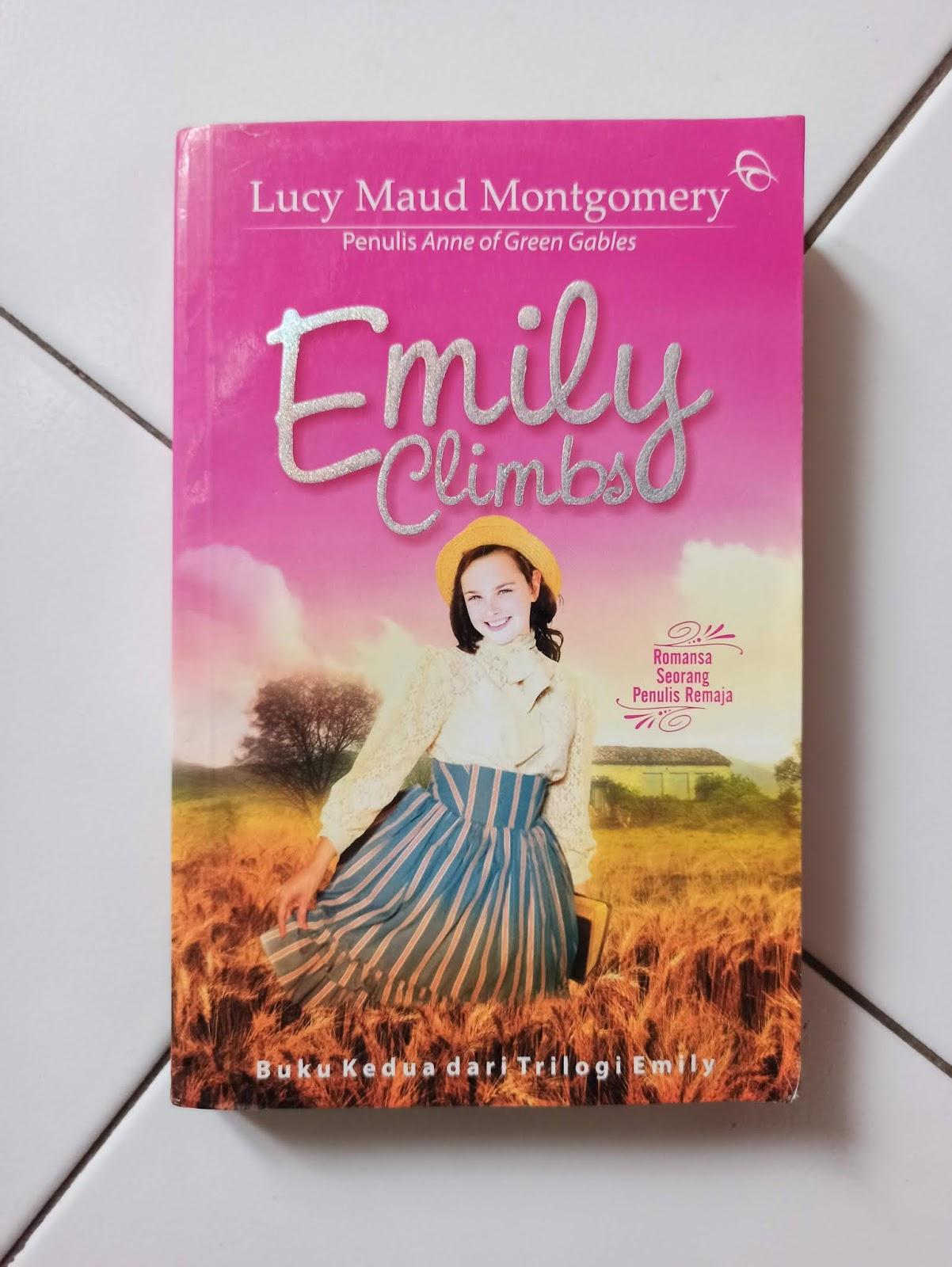 Jual Novel Bekas Emily Climbs