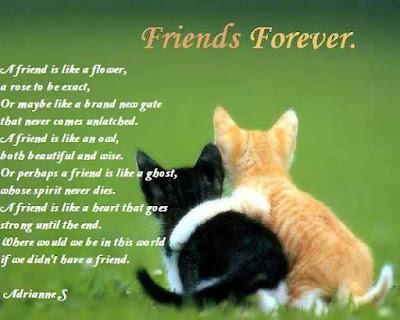 Friends Poems
