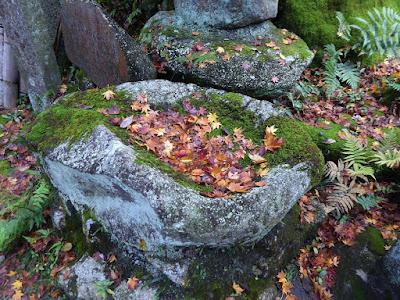 磐船神社 紅葉の落ち葉