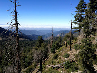 View south from Big Cienega Trail, Crystal Lake, Angeles National Forest