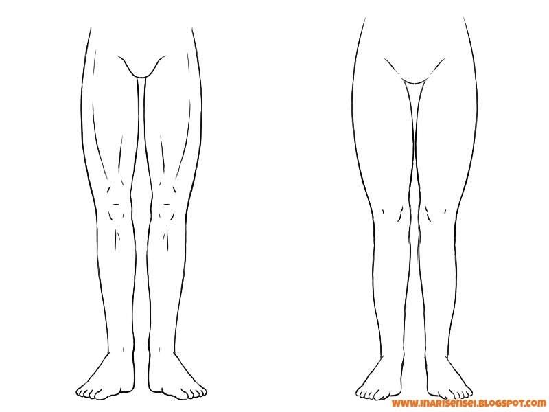 différences entre les jambes d'un homme et celles d'une femme