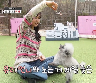 SNSD Yuri dogs are incredible
