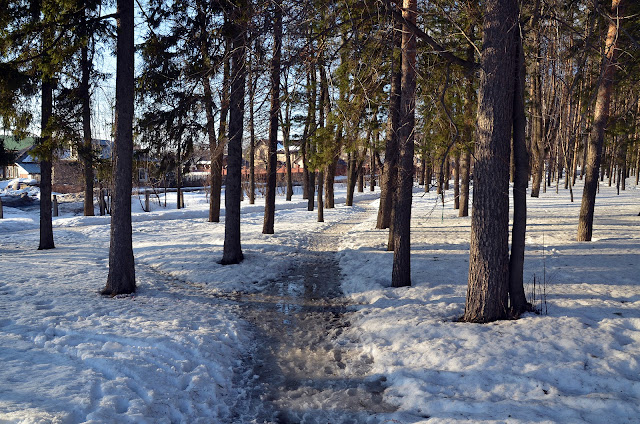 В парке Лысьвы ранней весной