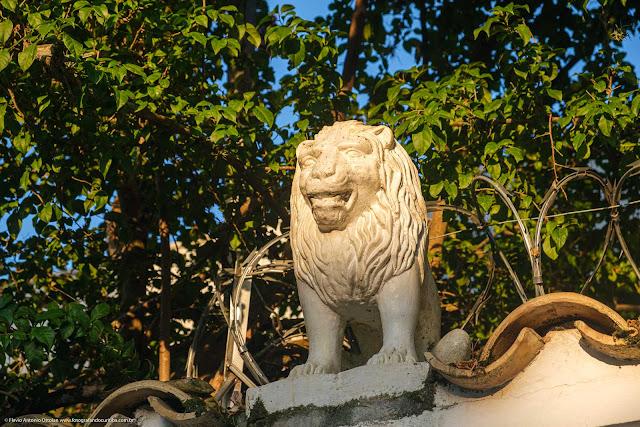 Escultura de leão sobre um muro