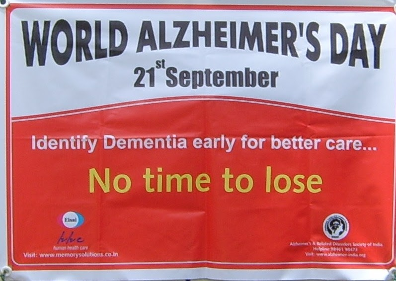 Reading, Chess May Help Fight Alzheimer's