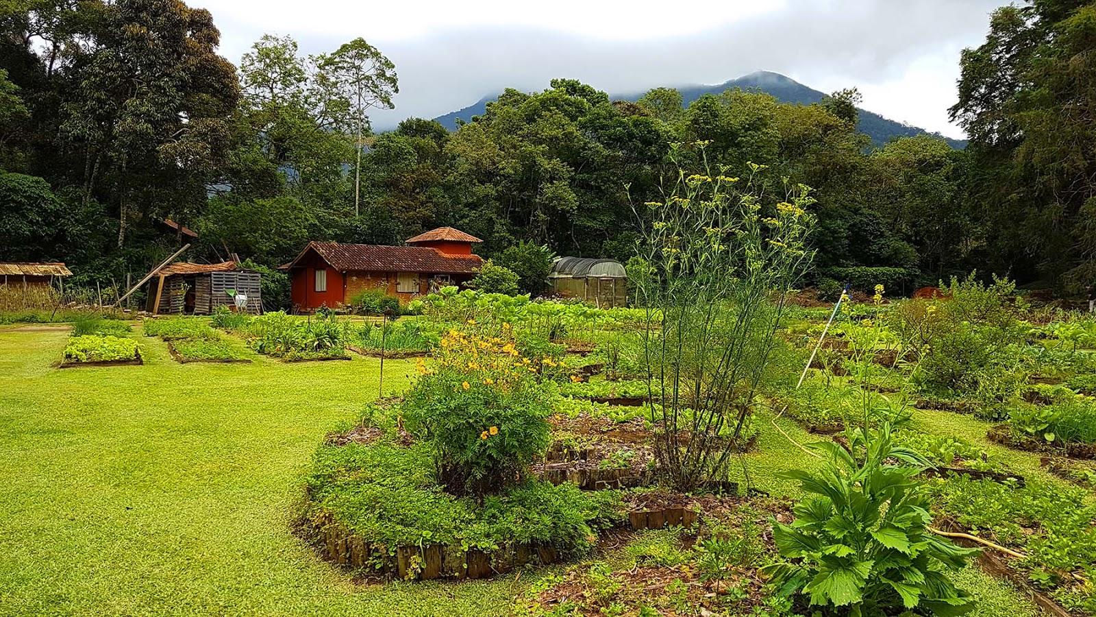 Horta do restaurante Trilhas do Araçari, Mury