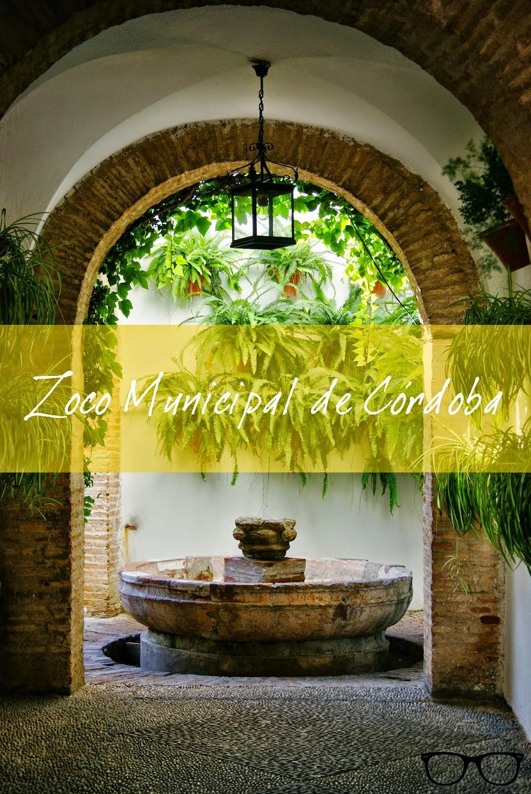 Titulo post Zoco Municipal de Córdoba