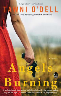 https://www.goodreads.com/book/show/25111044-angels-burning