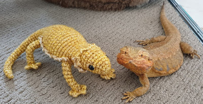 Crochet bearded dragon resting next to a real bearded dragon in matching poses