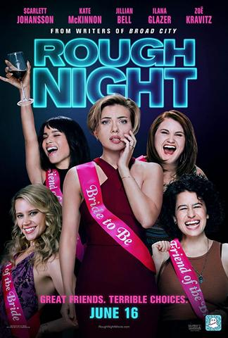 Rough Night 2017 Dual Audio Hindi 480p BluRay x264 400MB ESubs