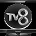 Tv8 canli izle