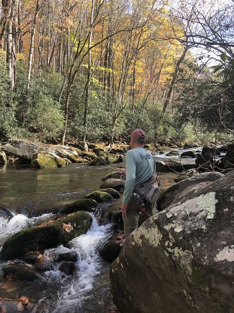 Fly fishing from the shady bank on Little River in the Great Smoky Mountains