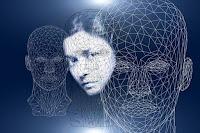Percezione sistema vivente