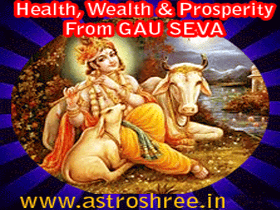 benefits of serving cow, gau seva benefits in astrology