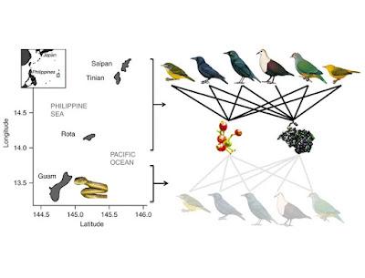 Species New to Science: [Ecology / Invasive Species • 2017