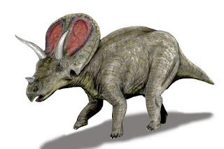 Agujaceratops Dinozoru Nedir?