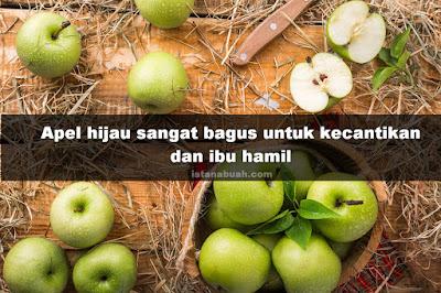 manfaat buah apel hijau