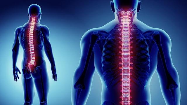Alquran dan Sains Ungkap Tulang Berhubungan dengan Memiliki Keturunan
