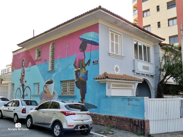 Vista ampla de Mural grafite em casarão antigo - Mirandópolis - São Paulo