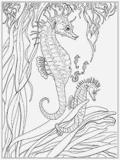 Sea Horse Adult Free Coloring Pages