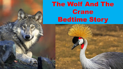 The Wolf And The Crane Bedtime Story