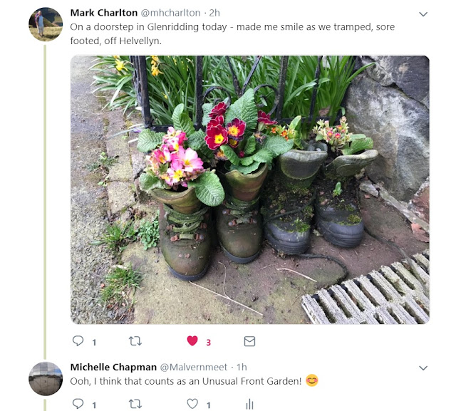 Walking boots filled with flowers