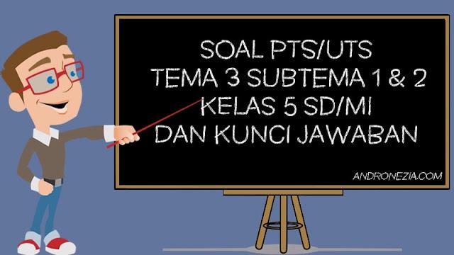 Soal PTS/UTS Kelas 5 Tema 3 Subtema 1 & 2 Semester 1