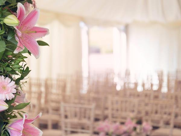 Wedding Wednesday   Postponed Wedding Plans