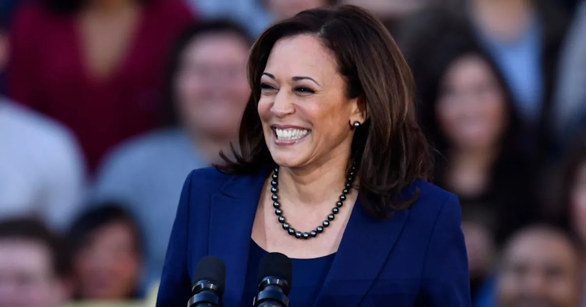 Kamala Harris Has Become The First Woman Ever Elected Vice-President