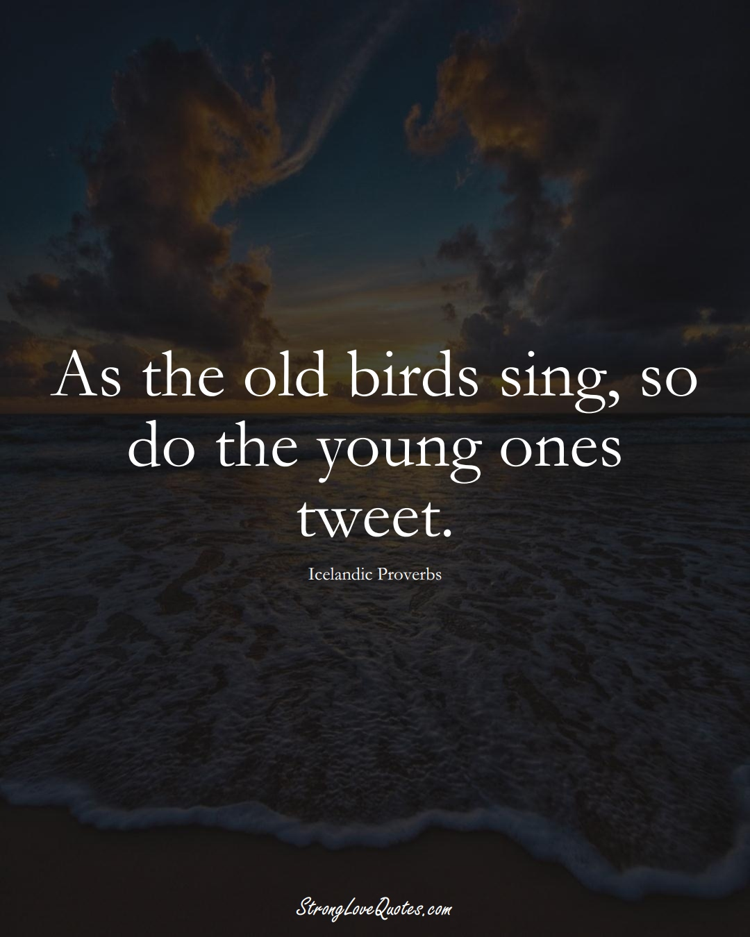 As the old birds sing, so do the young ones tweet. (Icelandic Sayings);  #EuropeanSayings