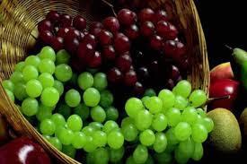 تفسير حلم العنب في المنام وما به من خير أو شر بالتفصيل