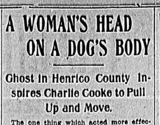 Giant 'Woman-Headed' Dog Encountered in Henrico County, Virginia