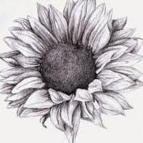 bunga matahari hitam putih