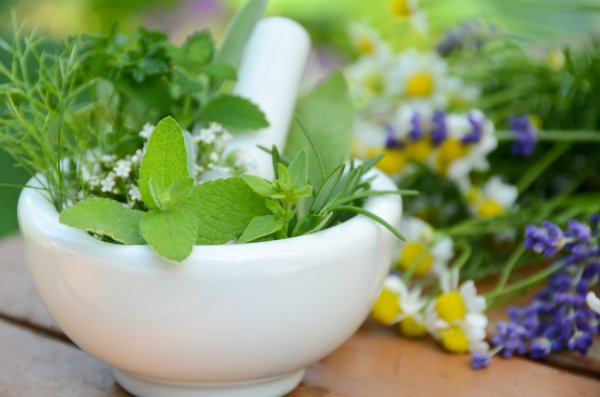 Plantas medicinales para bajar el azúcar