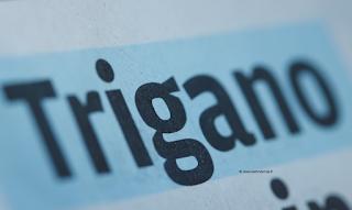 Action Trigano dividende exercice 2020