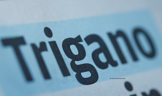 Trigano date de détachement 2021