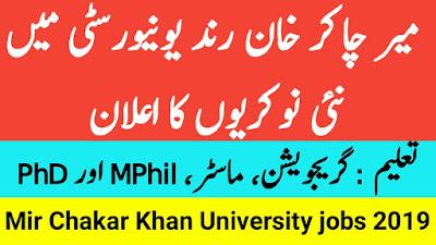 Mir Chakar Khan Rind University MCKRU Jobs 2019