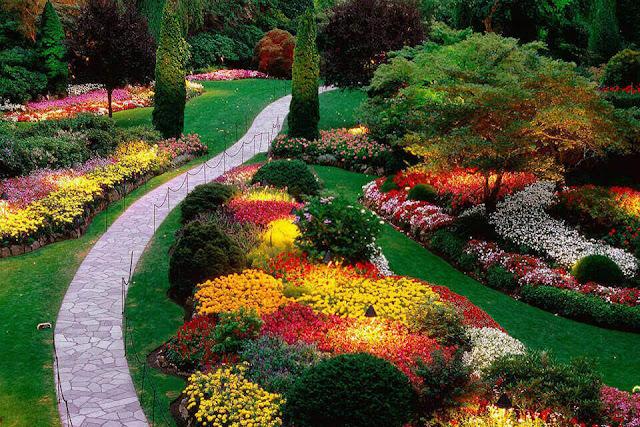 Vườn Butchart Garden