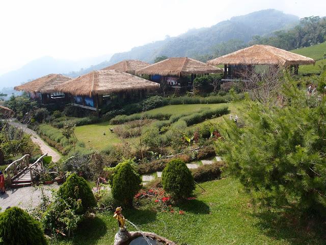 建于茶园中的五座泡茶亭