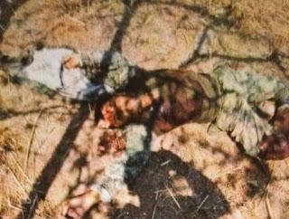 FOTOS: Continúa la guerra entre el CJNG y Los Viagras... así ejecutaron a 18 en Aguililla, Michoacán 2